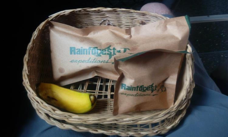 snack_rainforest_expedition